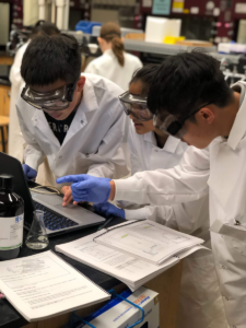 Students analyze data in the laboratory during the 2019 class. Image credit: The McNeil Group