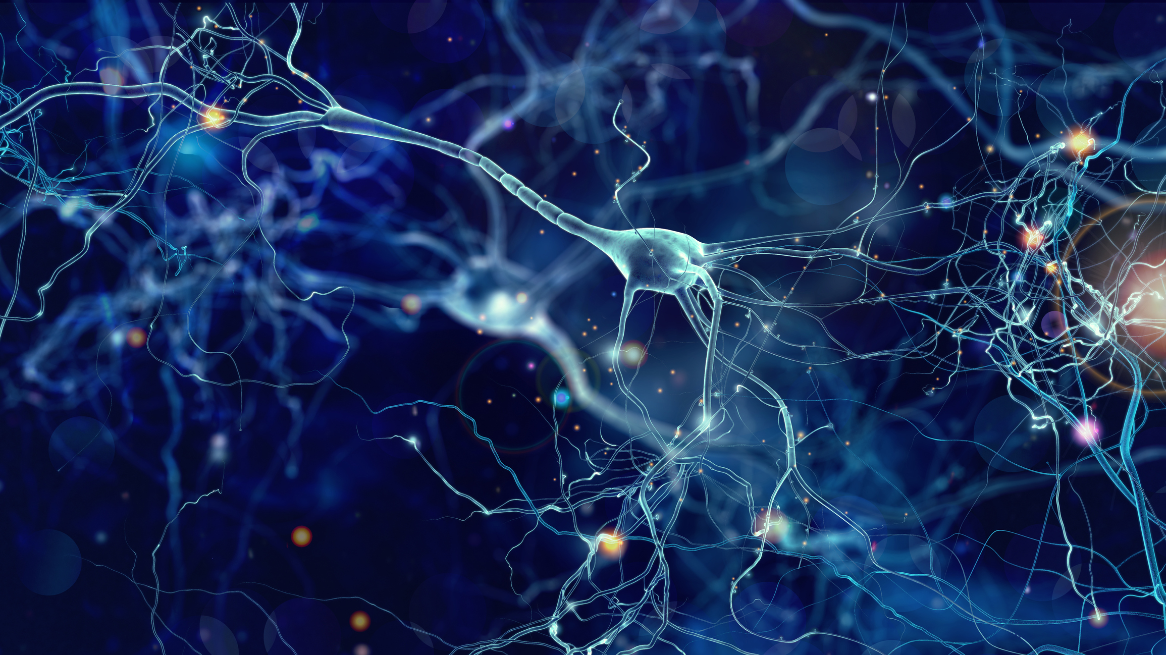 Conceptual illustration of neuron cells in the brain. Image credit: iStock