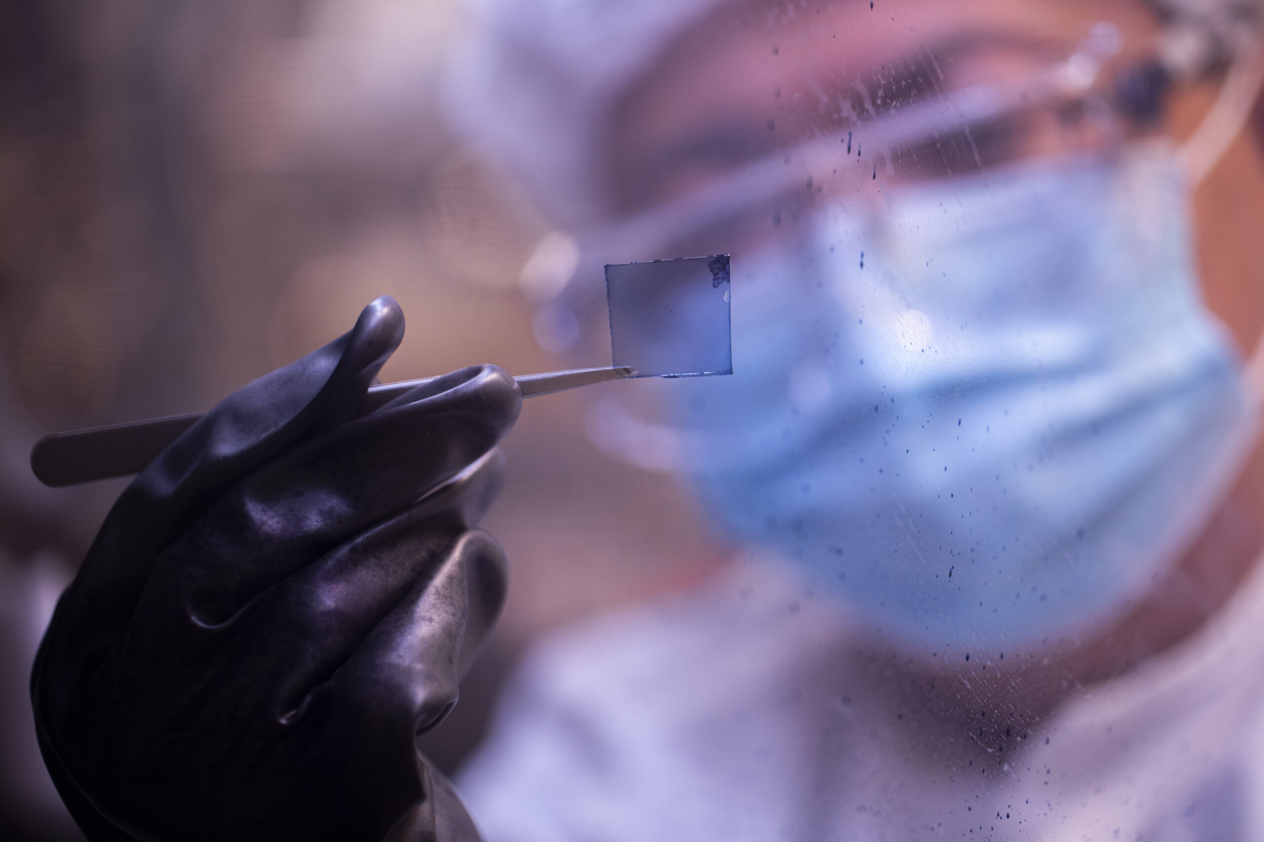 A researcher holds a square of the new transparent solar cell material with tweezers