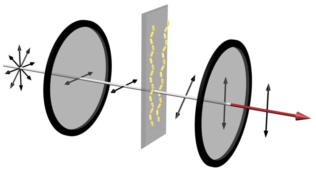 In a device that can reveal whether amyloid proteins are assembling into chains, unpolarized light enters a horizontal polarizer. This only allows waves oscillating in the horizontal direction to get through. Then, if the amyloid proteins have assembled the gold nanorods into chains, red light gets twisted, changing the angle of its polarization. Then, when it passes through the vertical polarizer, the portion of the light oscillating in the vertical direction gets through. This results in a strong red signal that can be seen with the naked eye. Credit: Jun Lu, Jilin University and University of Michigan.