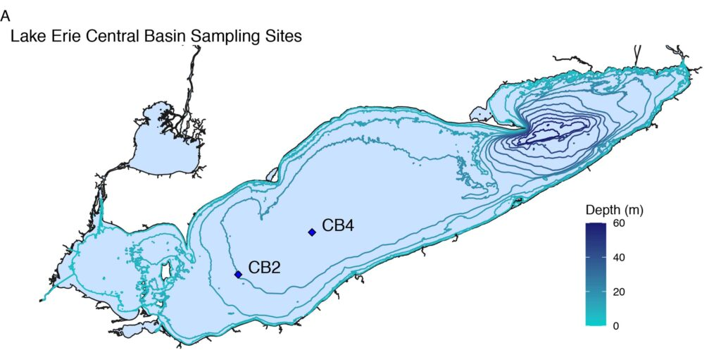 Map shows two locations (CB2 and CB4) in Lake Erie's central basin
