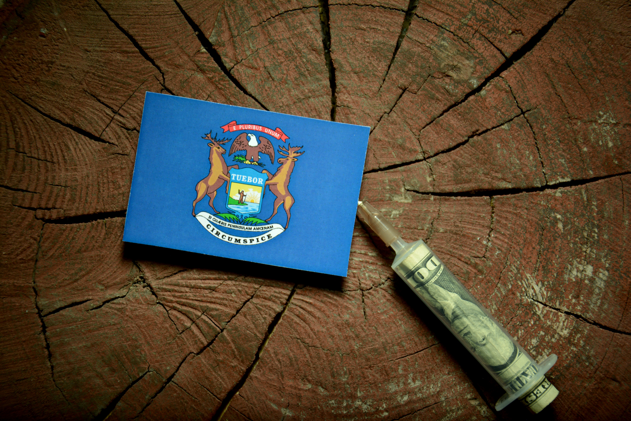 Michigan flag on a stump with syringe injecting money in flag. Image credit: iStock
