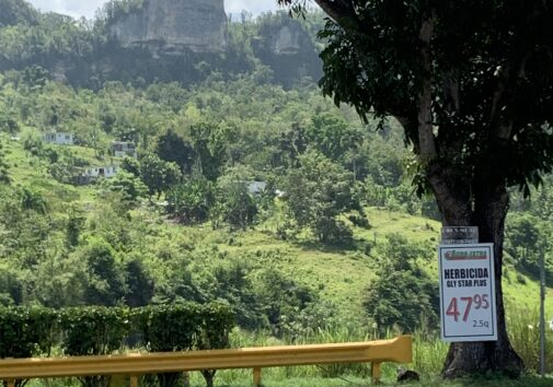 Photo caption: A sign advertising a glyphosate-based herbicide in northern Puerto Rico inspired University of Michigan researchers to look into the impact of the chemical on preterm births in the island. Image credit: John Meeker, University of Michigan School of Public Health.