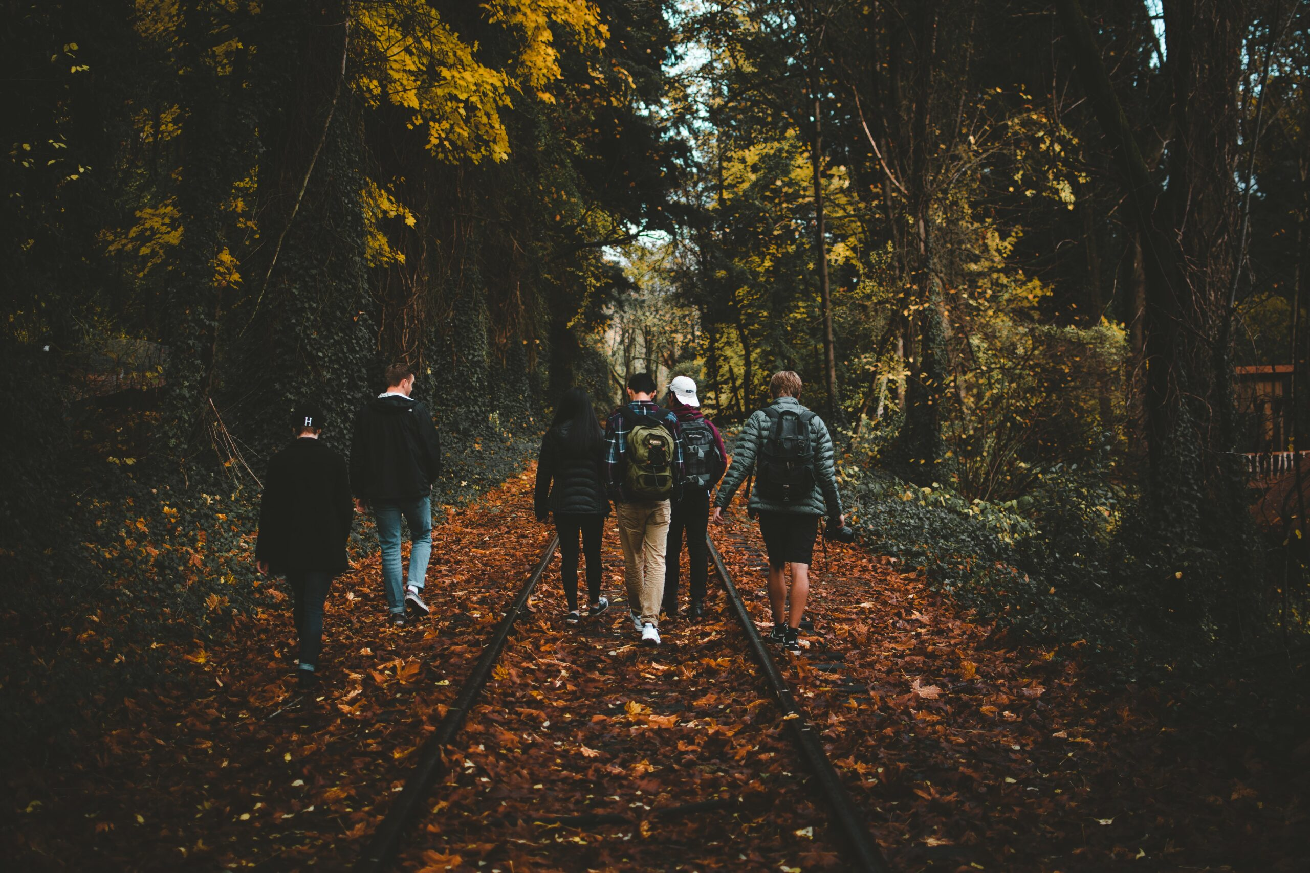 A group of young people walking in the woods. Image credit: Anthony Intraversato, Unsplash