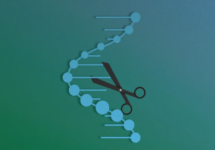 科研发现:新CRISPR-Cas9 工具能精确编辑RNA跟DNA